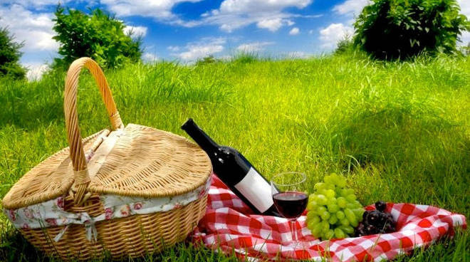 Pasqua pic nic vino colli-2