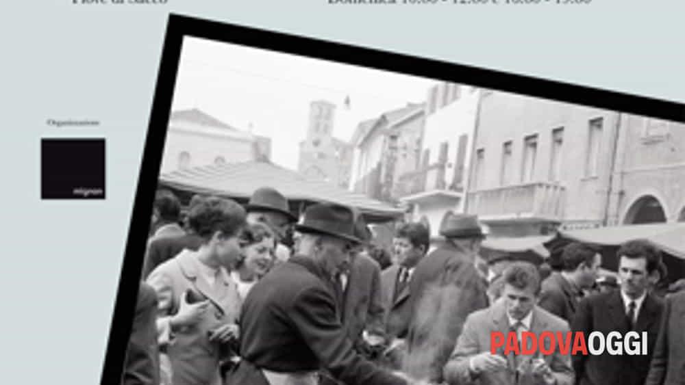 senza andare lontano - fotografie di luciano schiavon-2