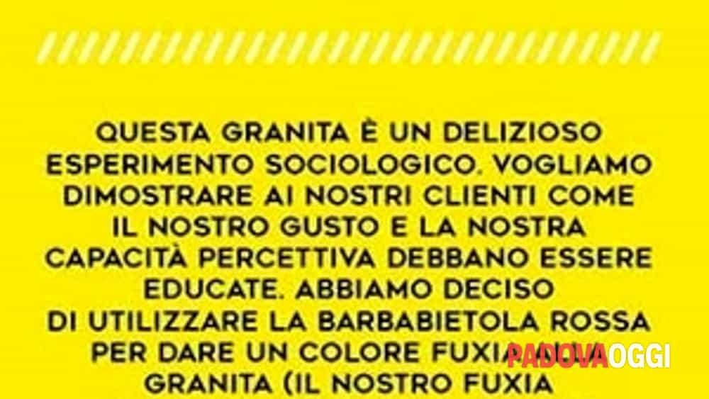una gelateria padovana al festival delle granite siciliane-2