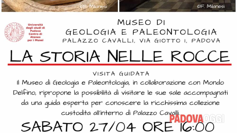 la storia nelle rocce - visite guidate al museo di geologia e paleontologia-2