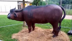 terrassa in festa - 3° festa della bontà di bufala-9