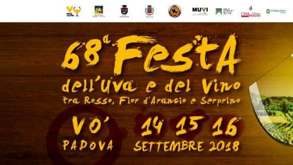 Festa dell'uva e del vino a Vo' Euganeo