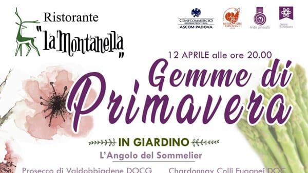 Gemme di Primavera al ristorante La Montanella di Arquà