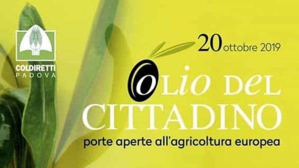 """L'evento """"Olio del cittadino"""" al frantoio Evo de Borgo di Arquà Petrarca"""