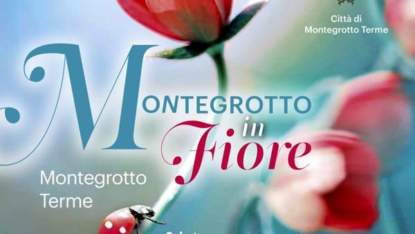 Montegrotto in fiore 2019