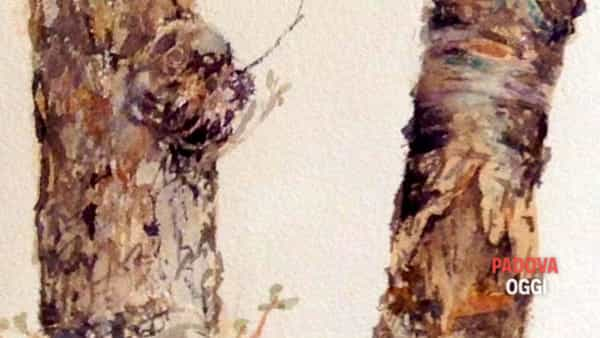 Sessione di pittura ad acquerello e disegno open air al Parco Milcovich