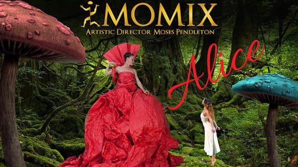 Momix, danza e illusioni al Gran teatro Geox