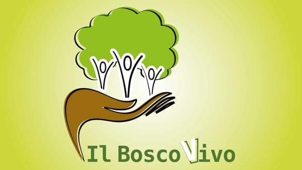 """""""Il bosco vivo di Polverara"""" ultimo atto: 300 alberi da piantare"""