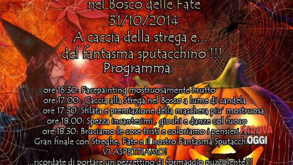 Happy Halloween 2014: nel bosco delle fate di Montegrotto Terme a caccia della strega