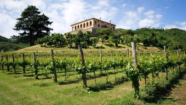 Sere del FAI d'Estate a villa dei Vescovi con visite e cena in vigna