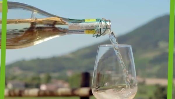 Un vino dalle caratteriste uniche: serprino o prosecco? Facciamo chiarezza