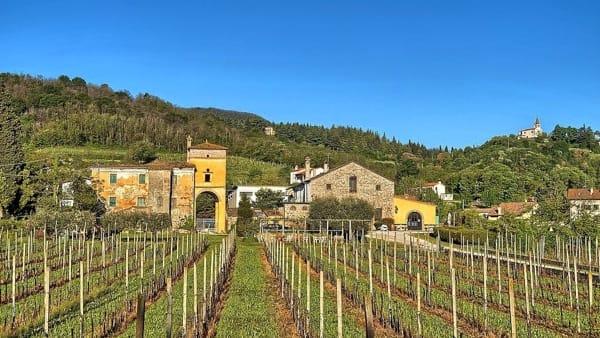 """""""Gli ombrosi sentieri del Monte Rua"""": passeggiata con degustazione"""