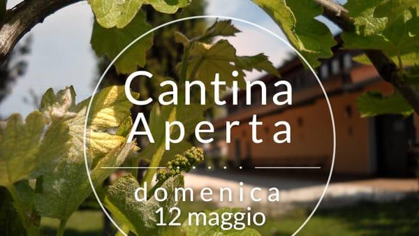"""""""Cantina aperta di primavera"""" a Candiana: musica, degustazioni e visite all'azienda agricola Gastaldi Gabriele"""