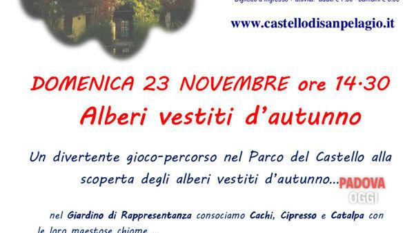 """Castello di San Pelagio: """"Alberi vestiti d'autunno"""""""