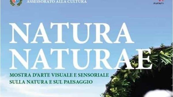 """""""Natura Naturae"""", mostra d'arte visuale e sensoriale su natura e paesaggio a Correzzola"""