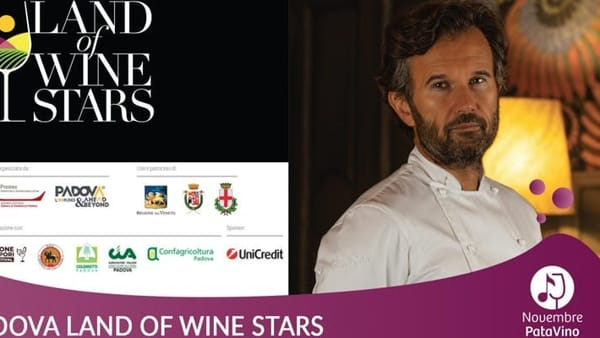 """Cracco a Padova per """"Land of wine stars"""":talk show e accensione dell'albero sul Liston"""