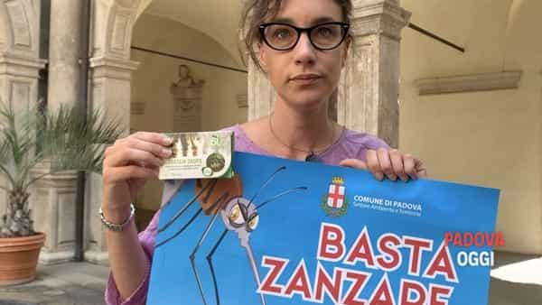"""""""Basta zanzare"""": la campagna del Comune di Padova"""