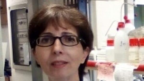 Padova, studio su ipertensione arteriosa, fibrillazione..