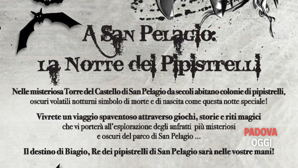 La notte dei pipistrelli a San Pelagio a Due Carrare