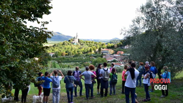 Escursione a piedi sui colli Euganei con degustazione finale nella zona di Galzignano