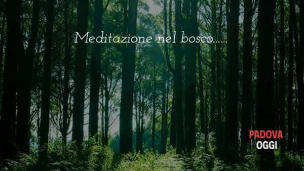 Aum Meditation: incontro di meditazione attiva, emozioni e amicizia al parco Fenice