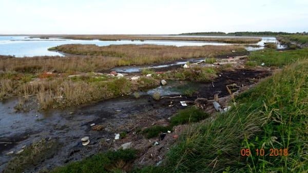 La laguna dei rifiuti, Gruppo d'intervento giuridico onlus-2