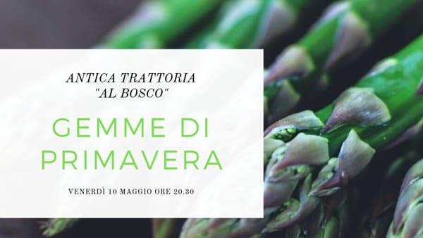 """Gemme di Primaveraall'antica trattoria """"Al bosco"""""""