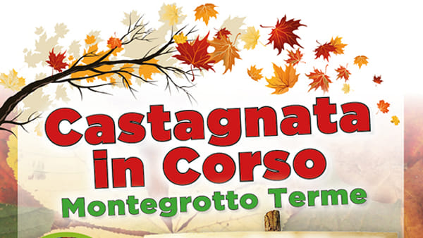 Castagnata in corso a Montegrotto Terme
