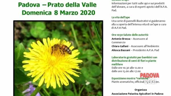 Api & prati - Salute alle erbe: laboratori, degustazioni, mercatini in Prato della Valle