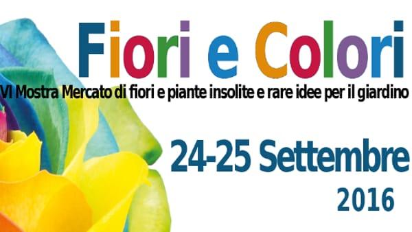 """""""Fiori e colori"""", mostra mercato piante e fiori a Piazzola sul Brenta"""