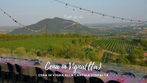 Cena in Vigna(lta): un'avventura, un incontro, un'esperienza alla cantina di Arquà