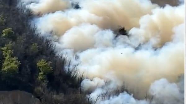 Incendio sui colli: le immagini