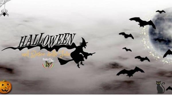 Halloween nel Bosco delle Fate a Montegrotto