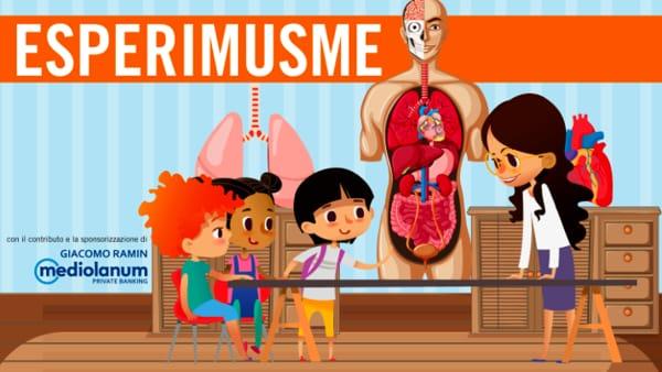 """EsperiMusme, laboratorio """"La pompa del corpo"""" al Museo di Storia della Medicina"""