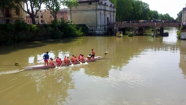 DRAGON BOAT rosa-2