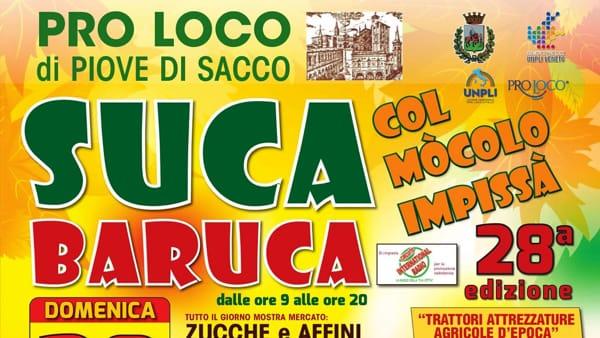 """""""Suca Baruca col mocolo impissà"""", festa della zucca a Piove di Sacco"""
