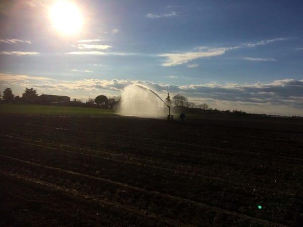irrigazione agricoltura campi aziende agricole coldiretti-2
