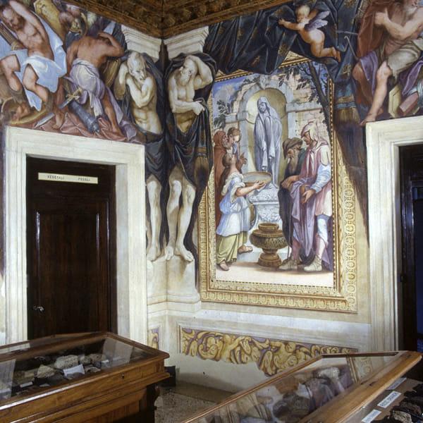 XXI 25 agosto Palazzo Cavalli Sala-dei-Telamoni (foto di S. Castelli, Università di Padova)-2