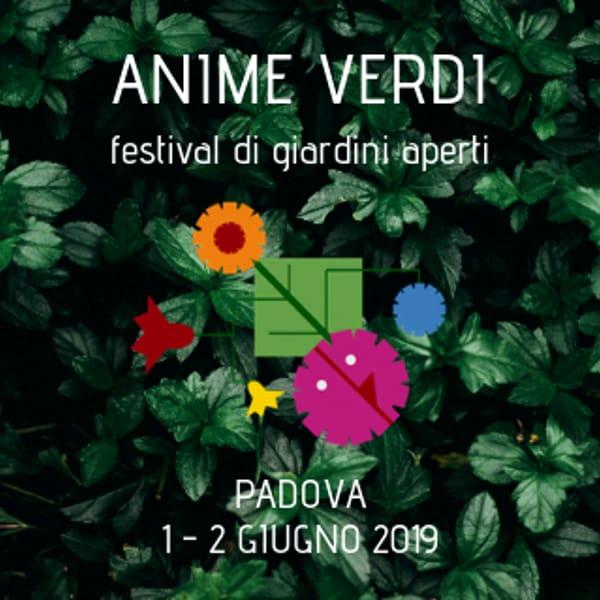 anime-verdi_2019-2