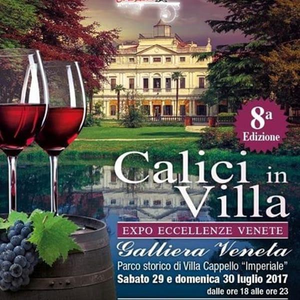 calici villa 2017-2