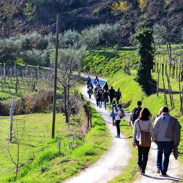 Escursione a piedi sui colli con degustazione finale, iniziativa di Viaggiare curiosi il 25 marzo 2017-2