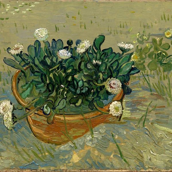 Van-Gogh-Margherite-1-2