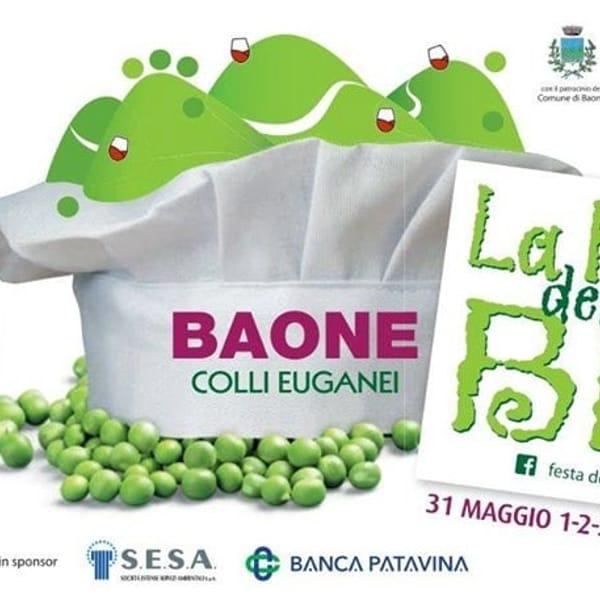 festa bisi baone 2019-2